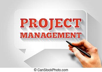 Projet, professionnel, gestion. Gestion, mot, étiquettes, résumé ...