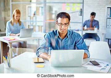 gestion réseau, dans, bureau