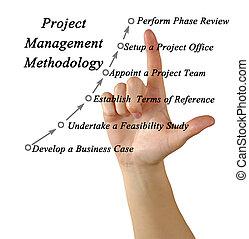 gestione progetti, metodologia