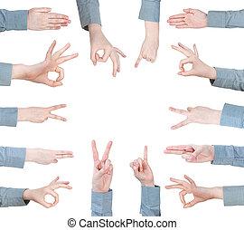 gesto, set, femmina, palme, -hand