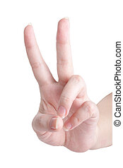 Gesture - hand showing victory, on white background (...