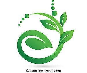 gesunde, bedeutung, in, a, pflanze, form, logo, vektor, ikone