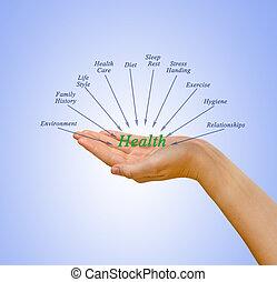gesundheit, komponenten