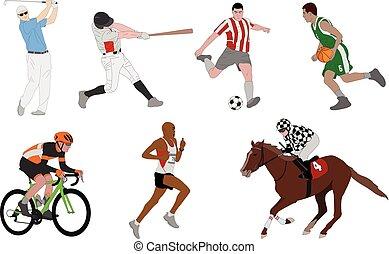 gevarieerd, sporten, gedetailleerd, illustratie