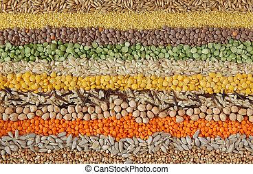 gevarieerd, zaden, en, graankorrel