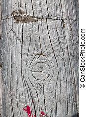 geverfde, hout, achtergrond, stuk