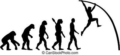 gewölbe, evolutionsphasen, stange