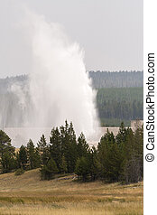 Geyser and hot spring in old faithful basin in Yellowstone National Park