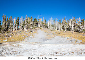Geyser eruption in the Old faithful area of the Yellowstone national park,