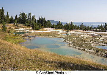 Geyser in Yellowstone National Park