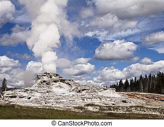 Geyser In Yellowstone Park