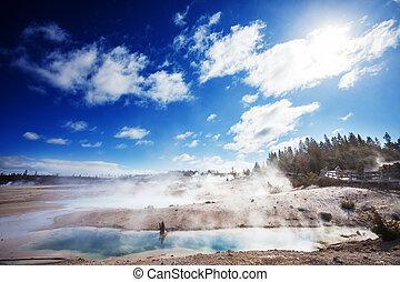 Geyser - Riverside geyser in Yellowstone