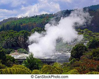 Geyser, Rotorua, New Zealand - Goethermal activity in...