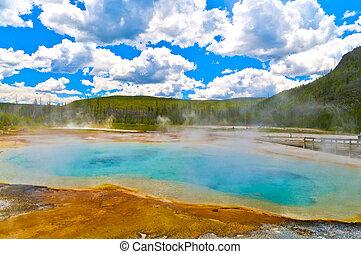 geyser, yellowstone