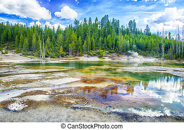 Geysers at Norris Basin in Yellowstone