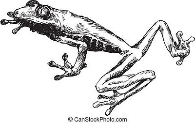 gezeichnet, frosch, hand