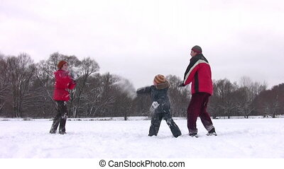 gezin, met, jongen, spelend, sneeuwbal