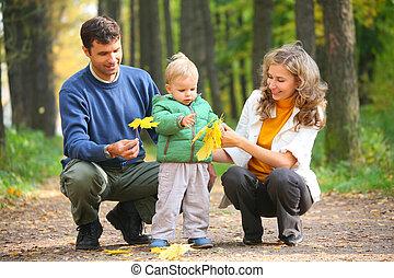 gezin, met kind, in, herfstachtig, hout