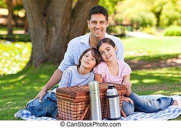 gezin, picnicking, in het park