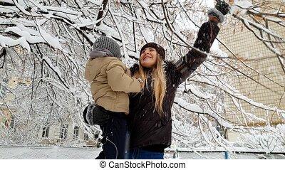 gezin, takken, winter, haar, boompje, park, jonge, zoon, ...