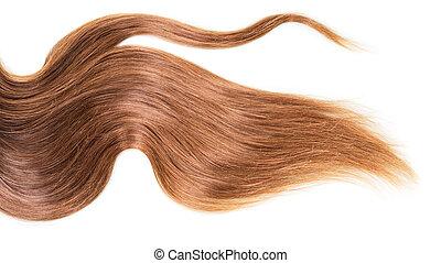 gezonde , bruin haar, vrijstaand, white.