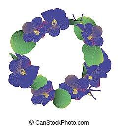 ghirlanda, azzurramento, fiori viola, africano, viola