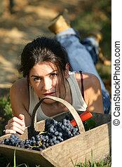giù, cesto, donna, posa, uva