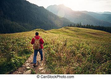 giù, escursionista, camminare, regione selvaggia, traccia, segno, scia