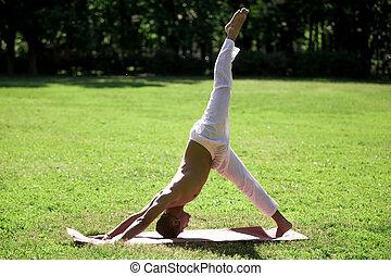 giù, parco, yoga, cane, one-legged