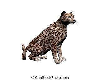 giaguaro, fronte, -, isolato, interpretazione, animale, bianco, vista, uggia, 3d