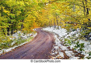 giallo, curva, strada