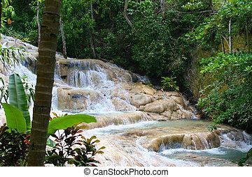 giamaica, dunn\'s, fiume, cadute