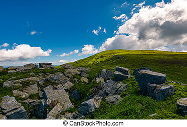 giant boulder on the grassy hillside. beautiful summer...