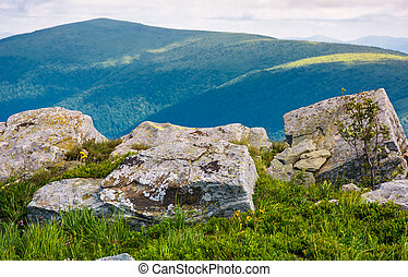giant boulders on grassy slopes of Polonina Runa. beautiful...