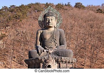 Giant Budda statue of Soraksan in winter