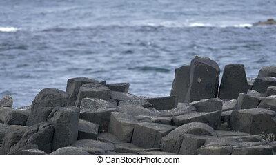Giant Causeway, Northern Ireland- Native Version - Native...