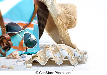 giant clam with beach bag - giant clam in front of beach bag...