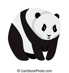 Giant Panda Bear Isolated on White.
