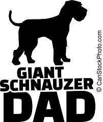 Giant Schnauzer dad
