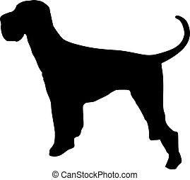 Giant Schnauzer dog