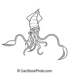 giant squid illustration