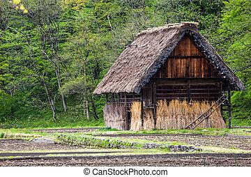 giappone, tradizionale, -, storico, ogimachi, shirakawa-go, giapponese, villaggio