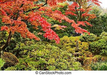 giapponese, stile, giardini