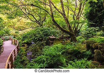 giapponese, tranquillo, giardino