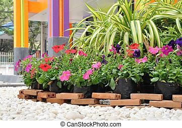 2 fiori disegno giardino pietre giardino for Cabine di roccia bianca