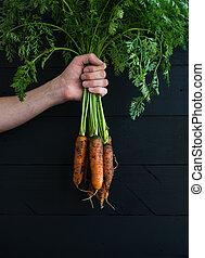 giardino, mano, foglie, carote, legno, nero, fresco, verde, fondale, mazzo