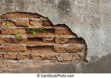 giardino pietra, parete, verde, crepa, crescente, bambù