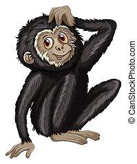 Gibbon - Illustration of a close up black gibbon