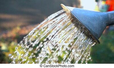 gießen, langsam, can., bewässerung, wasser, bewegung