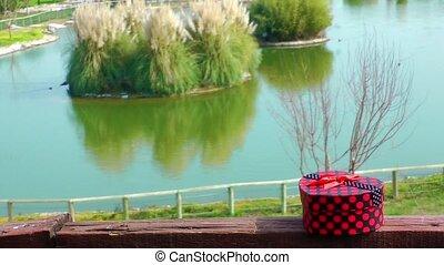 Gift box and nature and Lake